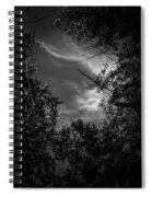 Shimmering Tree Branches Spiral Notebook