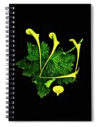 Shin - First Hebrew Letter Of Shalom Spiral Notebook