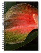 Shine A Light Spiral Notebook