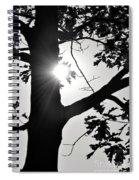 Shine Through Spiral Notebook