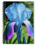 Shine Spiral Notebook