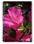 Shining Azalea Spiral Notebook