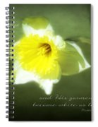 Shining Face Spiral Notebook