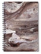Shoal Of Stone Fish Spiral Notebook