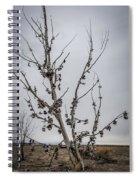 Shoe Tree Spiral Notebook