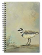 Shore Bird 2945 Spiral Notebook