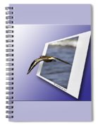 Shore Bird In Flight Spiral Notebook