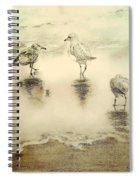 Shore Birds At Sunset Spiral Notebook