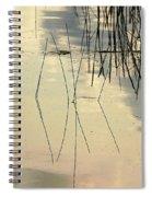 Shore Lines Spiral Notebook