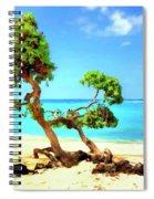 Shoreline At Makalawena Spiral Notebook