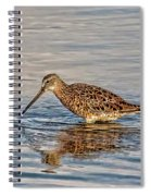 Short-billed Dowitcher Spiral Notebook