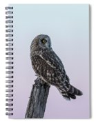 Short-eared Owl 2018-5 Spiral Notebook