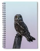 Short-eared Owl 2018-6 Spiral Notebook