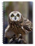 Short Eared Owl Spiral Notebook