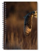 Short-eared Owl Banking Spiral Notebook