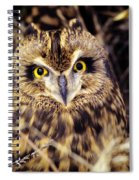 Short Eared Owl Spiral Notebook