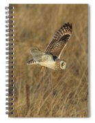 Short-eared Owl With Vole Spiral Notebook