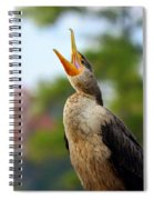 Shout Shout Let It All Out Spiral Notebook