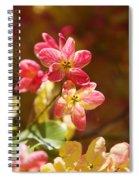 Shower Tree Blossoms Spiral Notebook