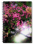 Shower Tree Flowers And Hawaii Sunset Spiral Notebook