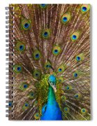 Showing Your Colors Spiral Notebook