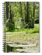 Shreks Swamp Spiral Notebook