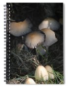 Shrooms 1 Spiral Notebook