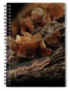 Shrooms Spiral Notebook