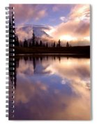 Shrouded In Clouds Spiral Notebook
