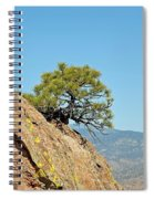 Shrub And Rock At Canon City Spiral Notebook