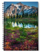 Shuksan Autumn Spiral Notebook