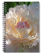 Shy Beauty Spiral Notebook