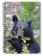 Shy Berry Picker Spiral Notebook