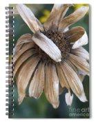 Shy Black-eyed Susan Spiral Notebook