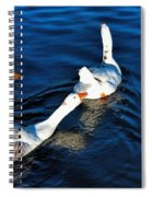 Shy But Lovely Spiral Notebook