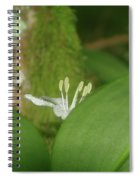 Shy Flower  Spiral Notebook
