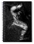 Shy Rocks Spiral Notebook