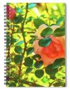 Sketchy Rose Spiral Notebook