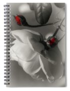 Shy White Rose Spiral Notebook