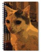 Si O No Spiral Notebook