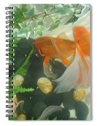 Siamese Fighting Fish 2 Spiral Notebook