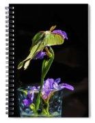 Siberian Iris And Luna Moth Spiral Notebook