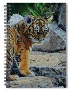Siberian Tiger Cub Spiral Notebook