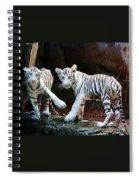 Siberian Tiger Cubs Spiral Notebook