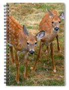 Siblings Visit Spiral Notebook
