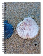 Side By Side Shells Spiral Notebook