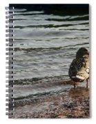 Side Eye Spiral Notebook