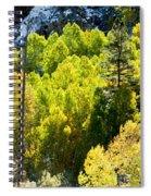 Sierra Fall Forest Spiral Notebook