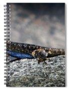 Sierra Fence Lizard 2 - Sierra Spiral Notebook