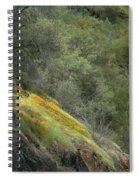 Sierra Poppies Spiral Notebook